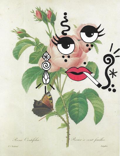 FLOWER FACES