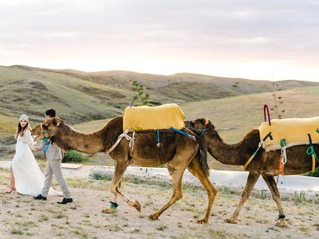 Eine Hochzeit in Marrakech