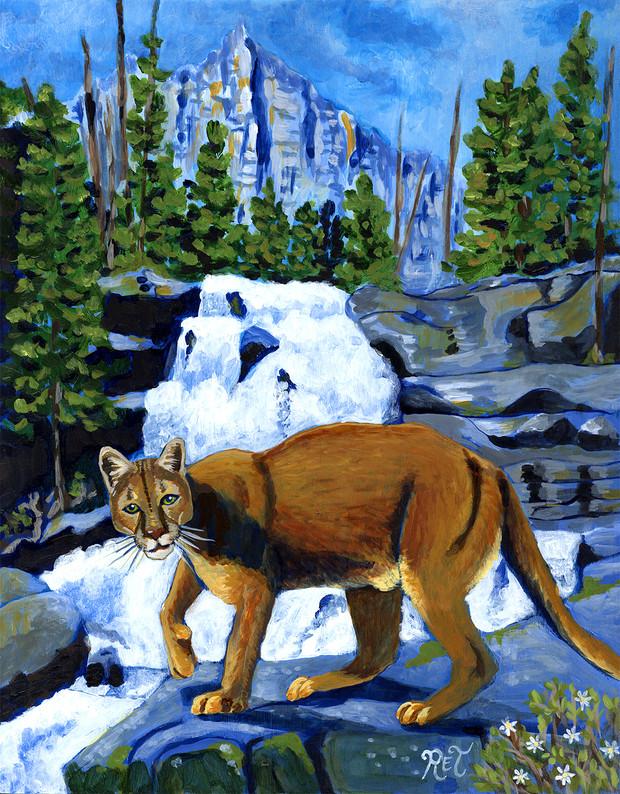 Mountain Lion & Waterfall