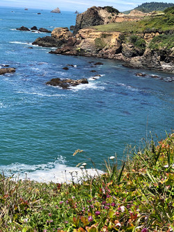View of the Pacific Ocean from my favorite nature trail
