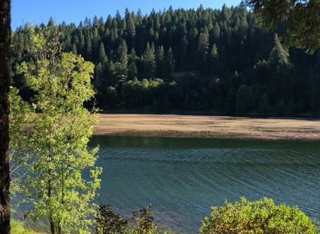 Kayaking on Ruth Lake