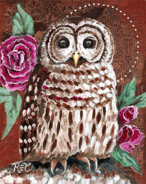 Barred Owl & Roses