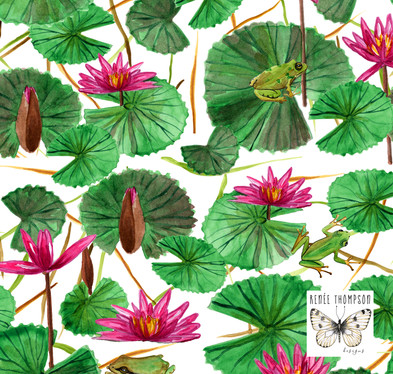 Water lilies & Frogs