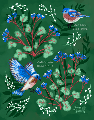 Blue Birds & Blue Bells