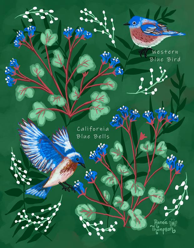 Blue Birds & Blue Bells