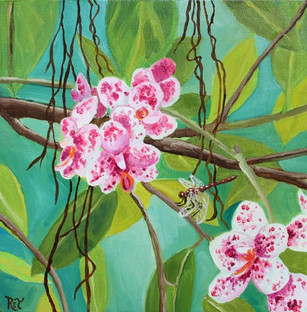 Orchids & Dragonfly