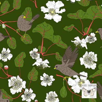 Kiwi & Sparrow