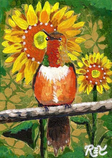 Rufous Hummingbird & Sunflowers