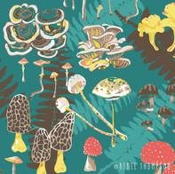 MushroomsNFerns.jpg
