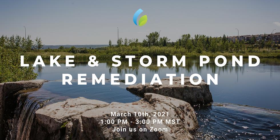 Lake & Storm Pond Remediation