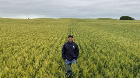Treating your seed with ACF-SR