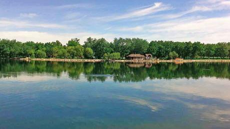 Henderson Lake Remediation