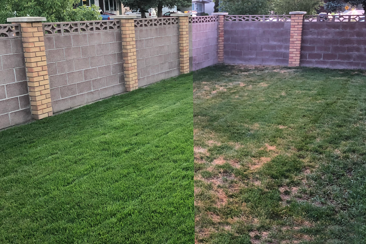 Copy of Ryans Lawn Before_After.png
