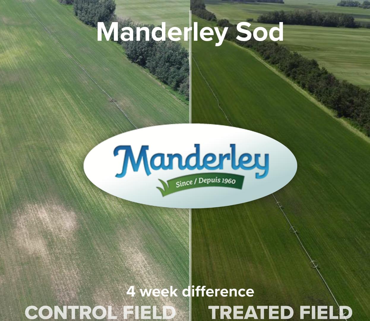 Manderley Sod.png