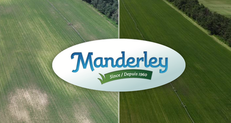 Manderley Turf Products Case Study