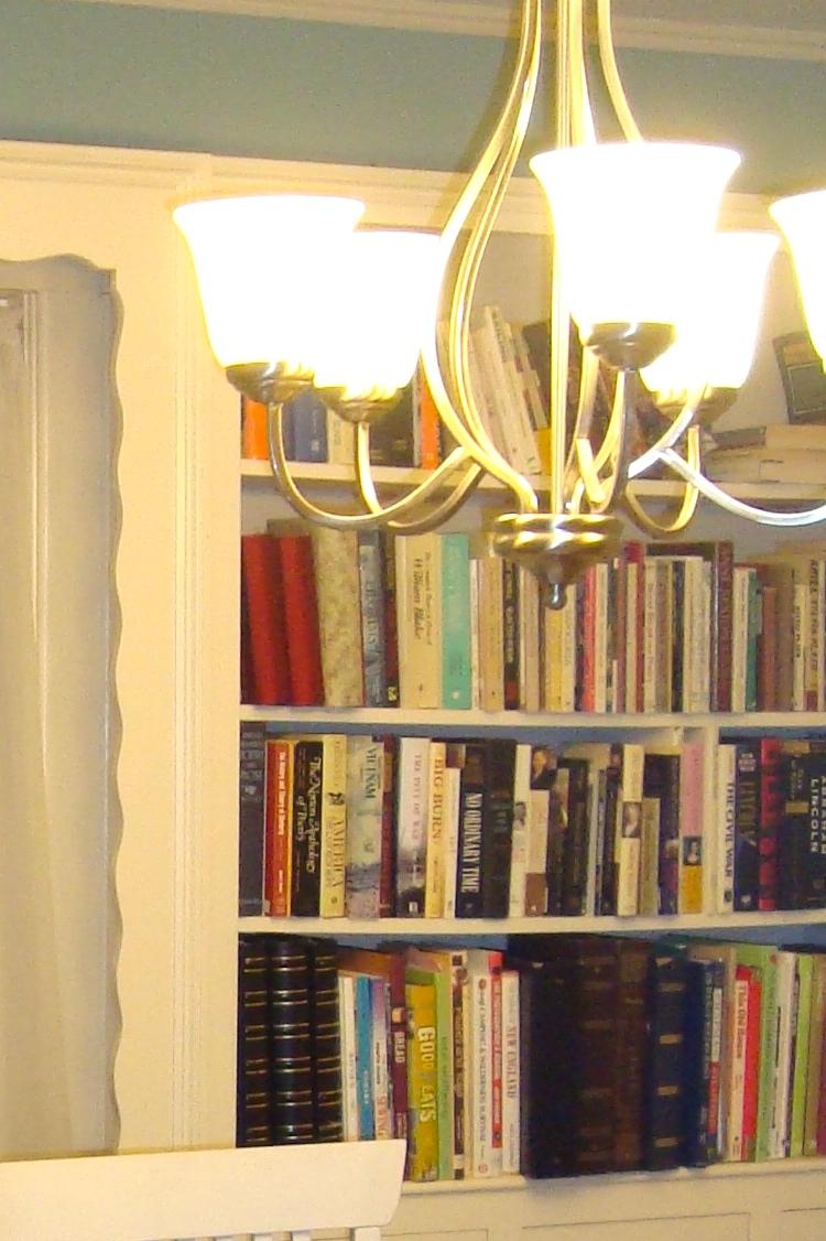 book shelves 3 before