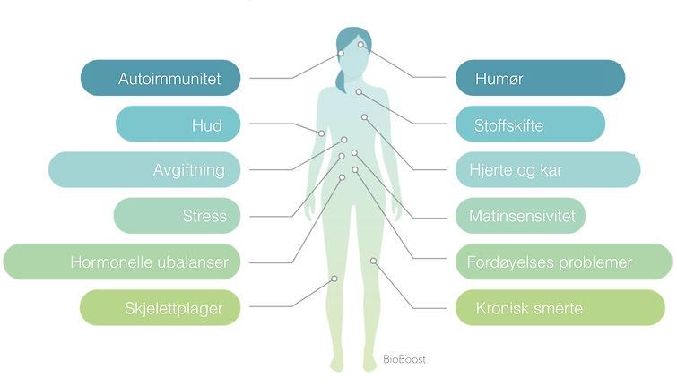Behandling av symptomer.jpg