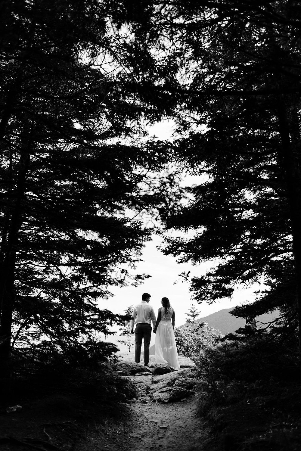 photo through the trees of the couple holding hands side by side facing away from the camera