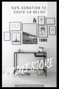 pinterest cover for print store donations in regards to covid-19
