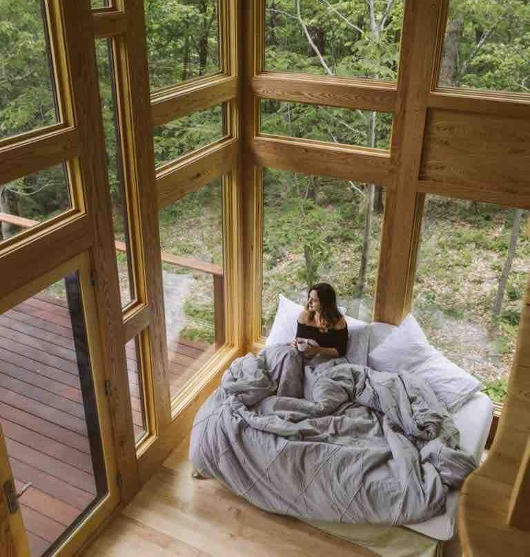 glass treehouse - modern getaway