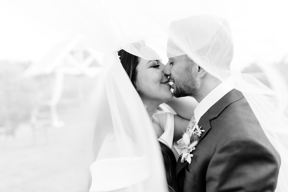 bride and groom kiss under the cathedral veil