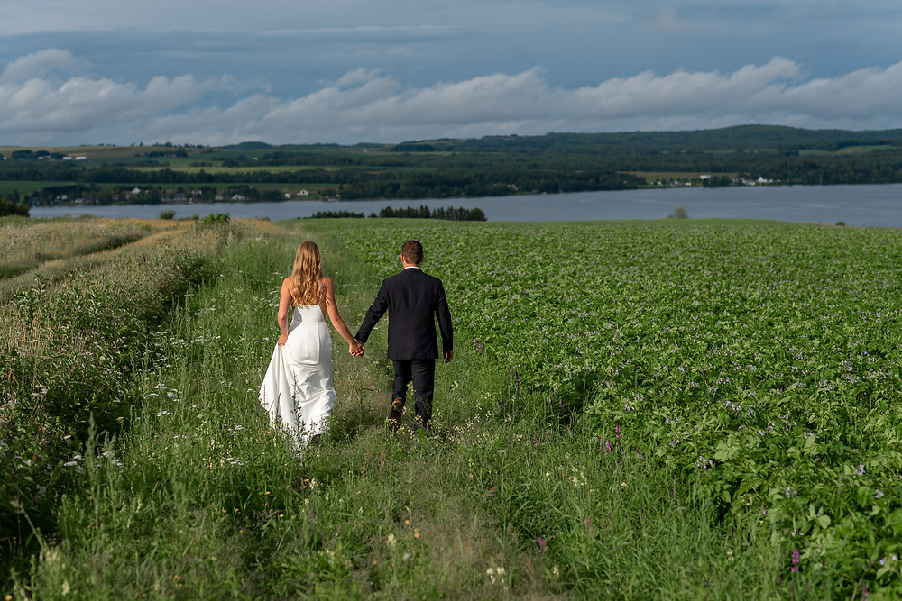 Maine adventure wedding in a potato field