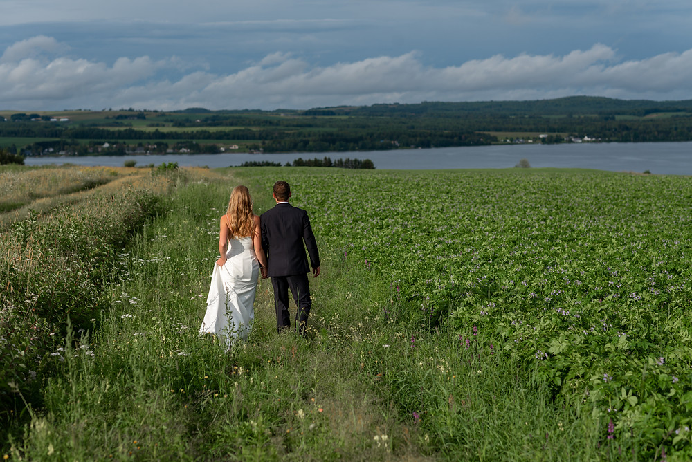couple walking through a field on coast of maine for intimate wedding