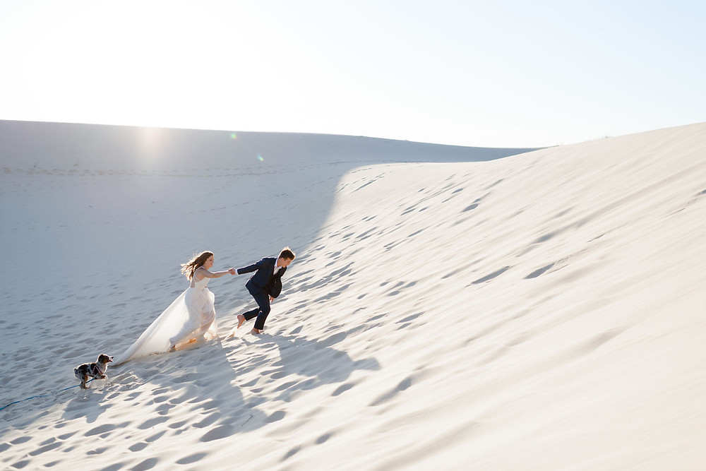 groom leads bride up the side of a sandhill. her dress is stretched out to show motion of them running. the dog is running after them