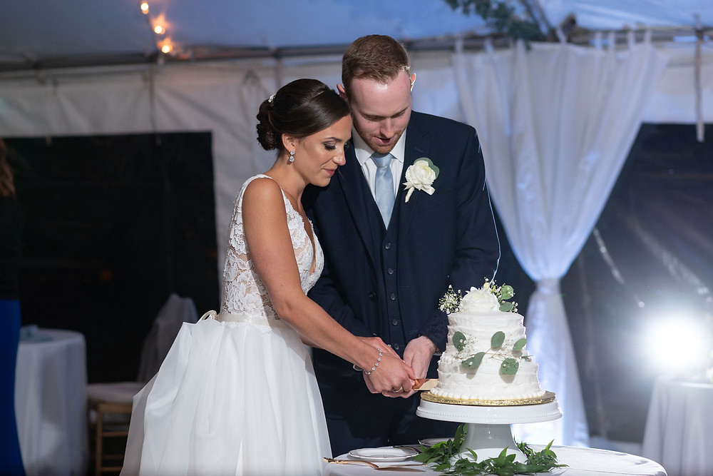 cake cutting during wedding reception