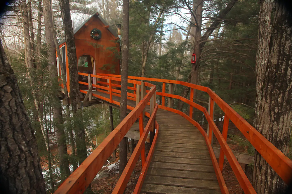 treetop airbnb with long walkway in the trees