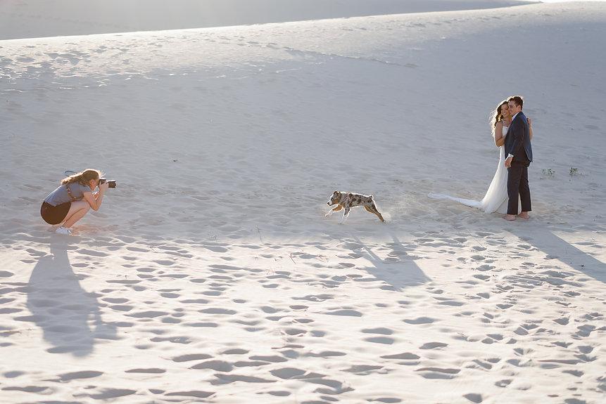monahans-sandhills-elopement-dog-2.jpg