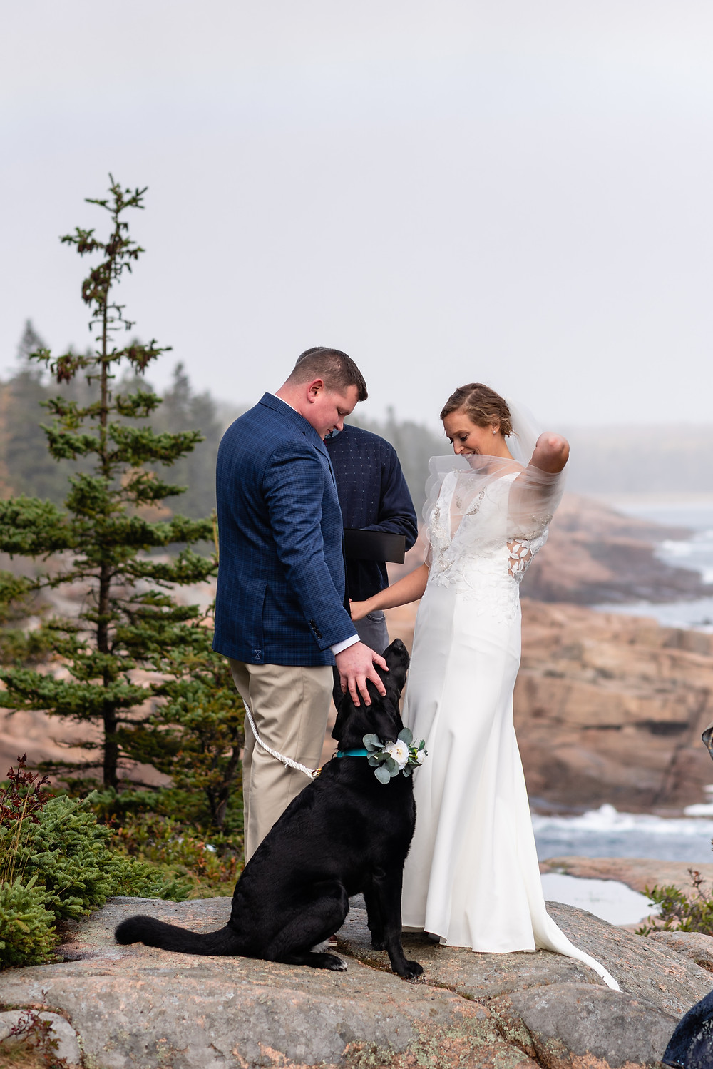 elopement ceremony with dog