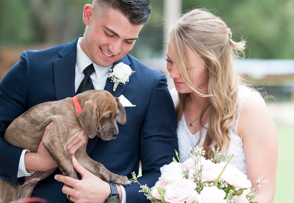 Wedding photography with family puppy dog pet