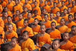 Buddhist Monks in Orange