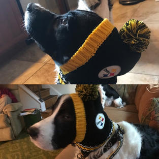 Pups are drafted first round