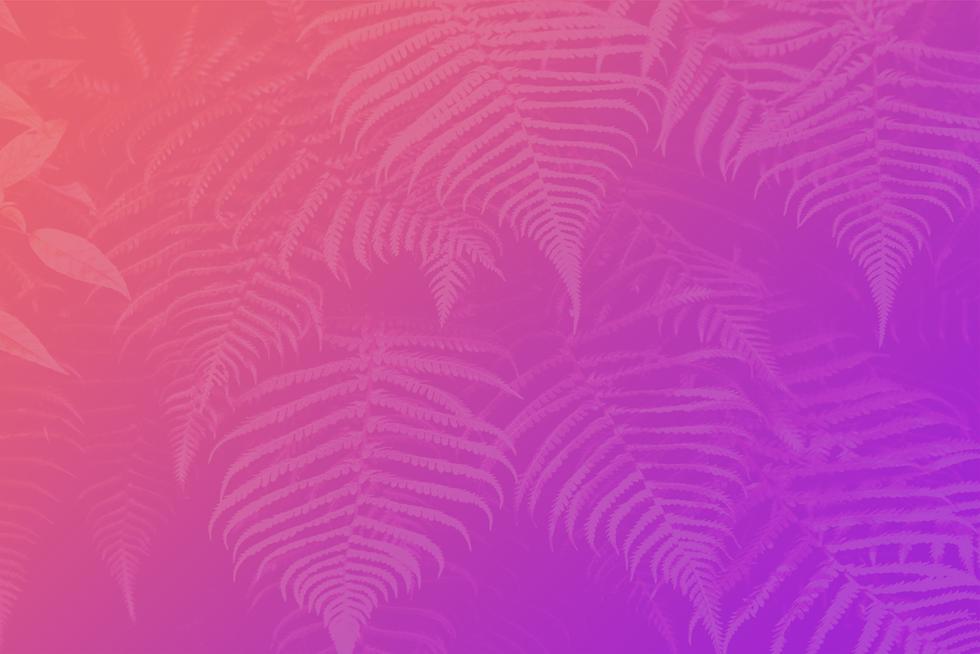 gradient_bg copy.png