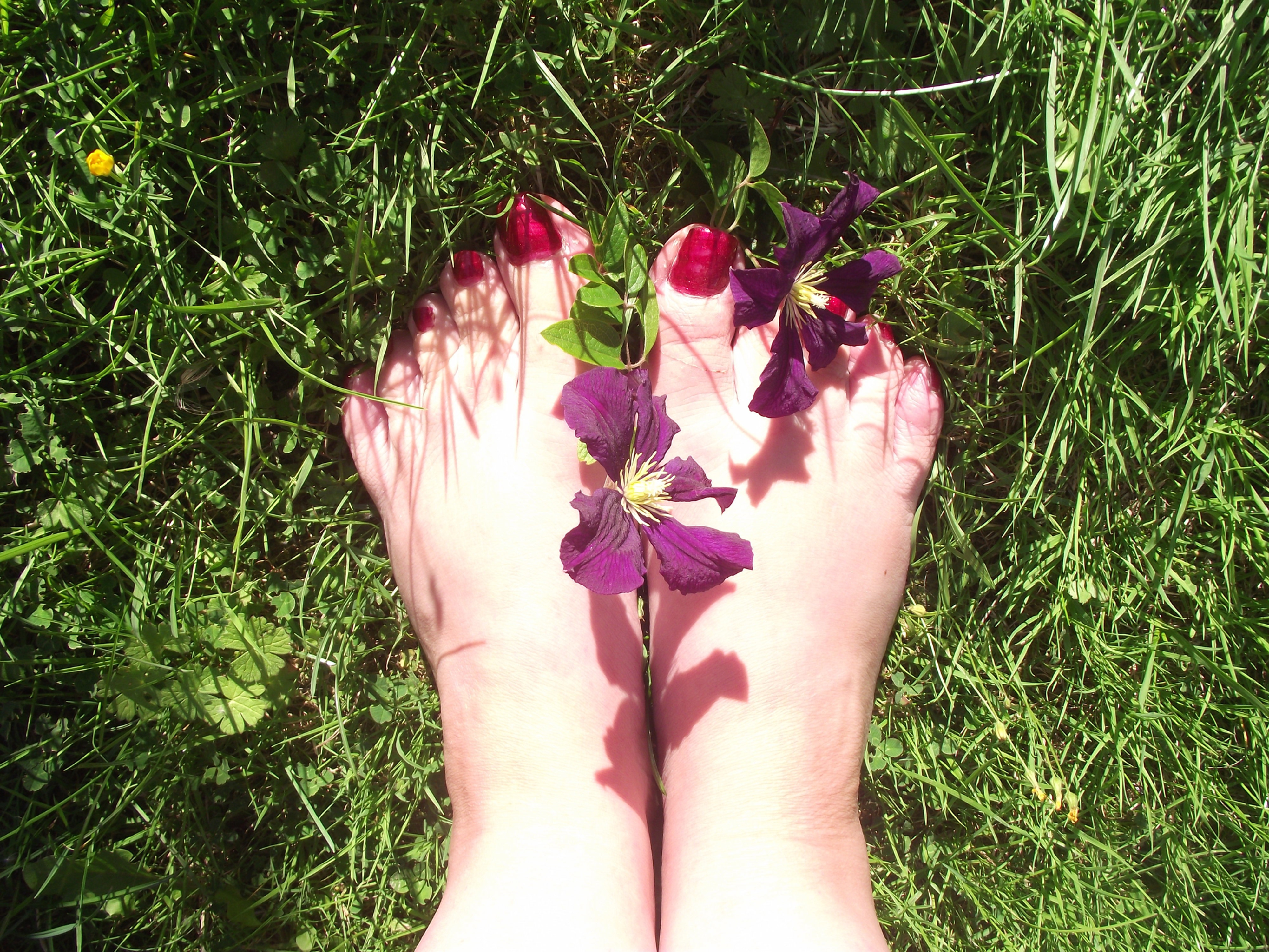 Traditional Foot Reflexology