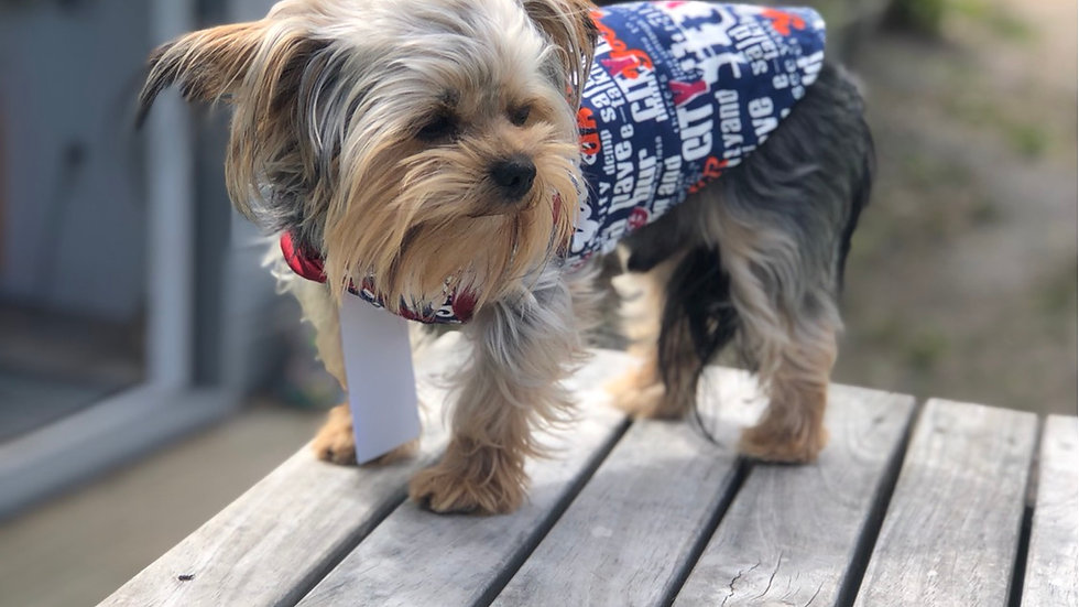 Double sided dog coat