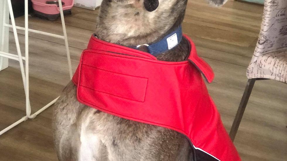 Large dog coat