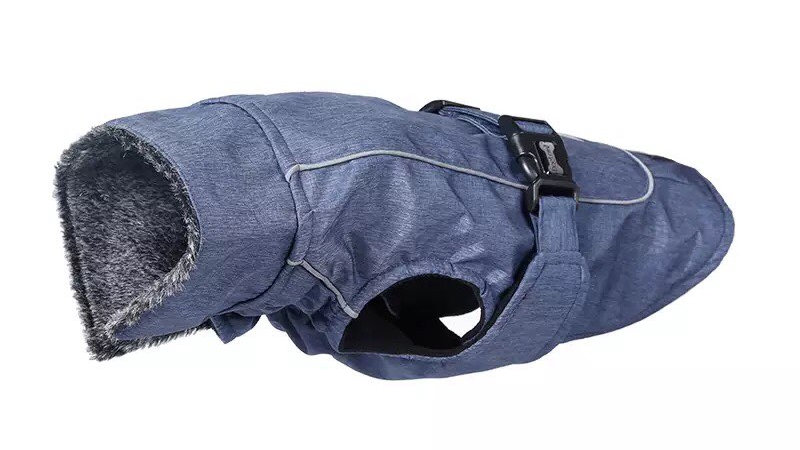 Blue Bazil coat