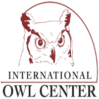 OwlCenter.png