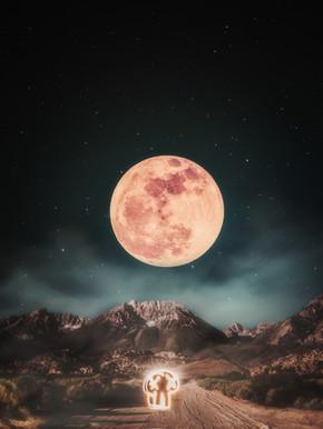 moonoween-done4lesssmoke.jpg
