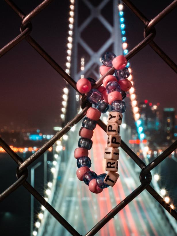 trippy bridge-3.jpg