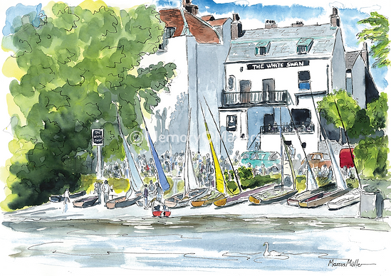 White Swan on Twickenham Riverside, watercolour & ink painting