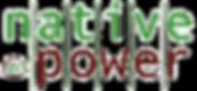 cropped-NP-Logo-transparent-mit-BM-1.png