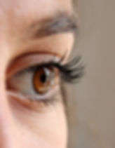 eye-eyelashes-face-woman-63320.jpeg