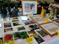 Open Classes - Photographs & Paintings