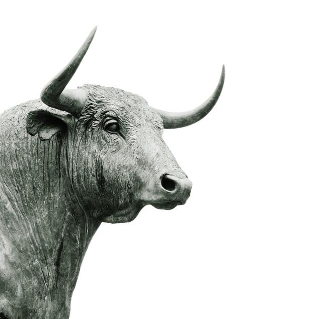 Long Live the Bull Market