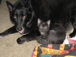 Kali & Munchy