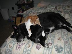 Kali & Lucky